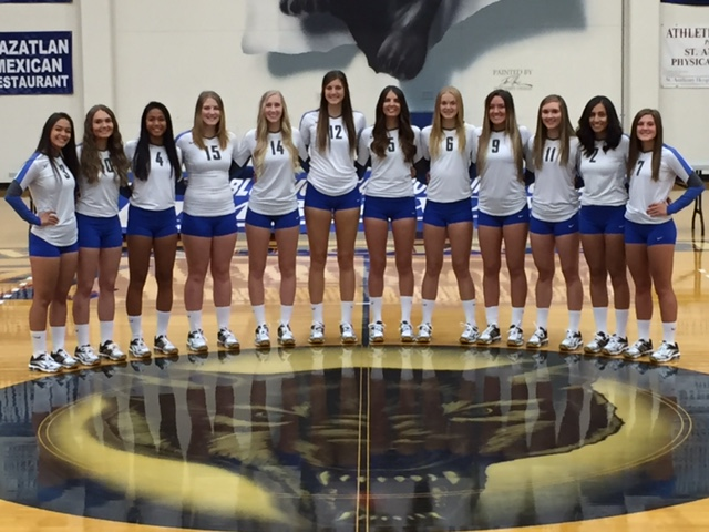 2016 Volleyball Timberwolves