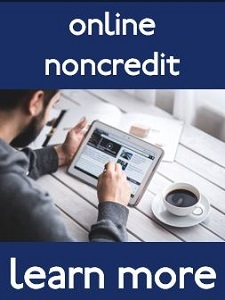 Online Noncredit